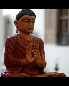 Meeting with Guru