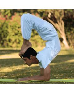 18-Day 200-Hour Raja Yoga Teacher Training